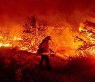 Los incendios forestales que afectan la zona oeste de los Estados Unidos han sido de los más intensos de los últimos cinco años.