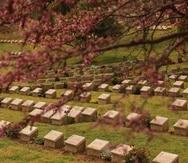Cementerio Shrapnel Valley.