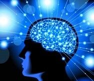 """Al recibir una oferta de dinero,los voluntarios, activaban áreas del cerebro relacionadas con el bienestar, en el hemisferio derecho y la parte frontal, pero sólo aquellos que lo aceptaban activaban el """"giro frontal inferior"""" izquierdo. (Shutterstock.com)"""