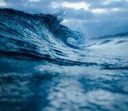 El impacto de los cambios en la salinidad del mar