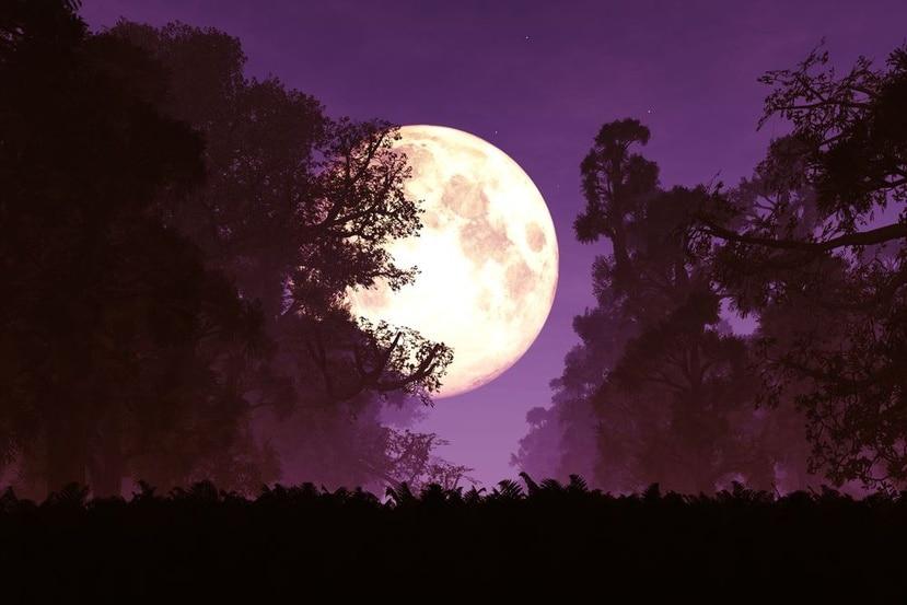 La superluna rosa se caracteriza por ser más brillante. (Shutterstock)