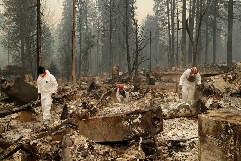 Rescatistas buscan restos humanos en un sitio quemado en Paradise, California. (AP)