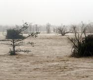 Residentes de Toa Baja aún recuerdan cómo el río La Plata se salió de su cauce con el paso del huracán María, y sus aguas inundaron muchas calles y casas de la zona. (GFR Media)