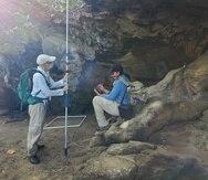Isabel Rivera Collazo y un grupo de científicos comenzaron a documentar 35 millas de la costa norte.