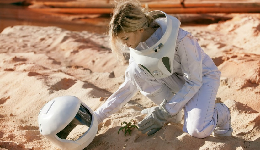 La mayoría de las plantas que conocemos también podrían crecer en el planeta rojo mediante cultivos hidropónicos (Shutterstock).