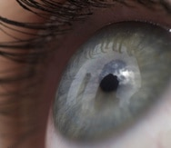 Los participantes en el nuevo estudio deberán ser niños de por lo menos 3 años y adultos con visión parcial (AP).