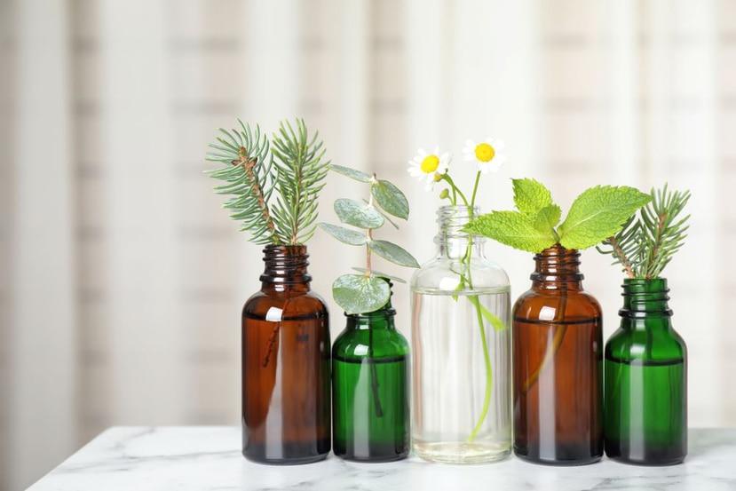 El uso de aceites esenciales pueden mejorar la salud o el estado anímico de una persona. (Shutterstock)