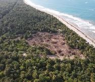 "Recursos Naturales investiga ""desastre ecológico"" en Piñones"