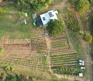 Según la FAO, la agroecología puede revertir la contaminación química, biológica y física de los suelos.