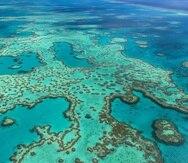 Vista aérea de la Gran Barrera de Coral. (EFE)