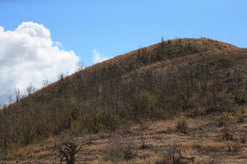 Vista de un terreno con condiciones secas al sur de Puerto Rico.