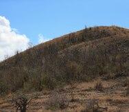 Se eleva a 77% el porcentaje de la isla bajo patrones de sequía