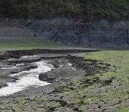 La sequía que afecta a Puerto Rico y la extracción constante de los acuíferos del sur han afectado la estabilidad de este recurso. (Archivo / GFR Media)
