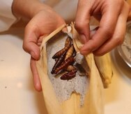 Fotografía de la elaboración de tamales con insectos, el jueves 30 de enero de 2020, en Ciudad de México (México). (EFE/ Mario Guzmán)
