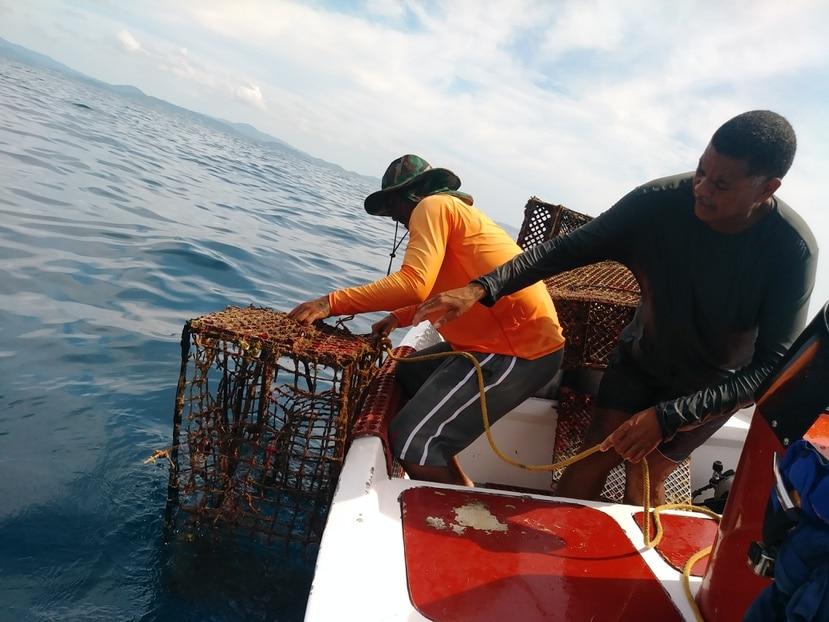 Hasta junio pasado, se habían removido 60,000 libras o 30 toneladas de artes de pesca perdidos o abandonados en aguas boricuas.