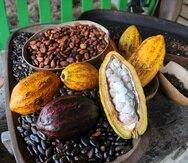 El cacao fino de Puerto Rico ya ha sido reconocido mundialmente por su calidad.