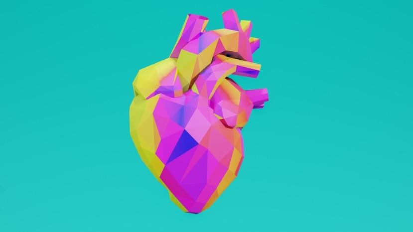 Muchos lo describen como el órgano que demuestra sentimientos, que palpita cuando el romance está cerca o le añaden ese toque de magia para demostrar el coraje o el valor que puede sentir un ser humano, pero el corazón es mucho más.