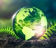 Las lecciones hay que aprenderlas: el planeta Tierra nos necesita.