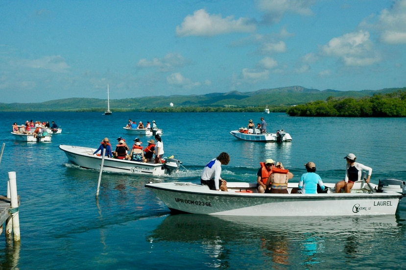 Como parte de las actividades de la reunión, se hará una limpieza de arrecifes de coral y cayos de manglar en La Parguera. (Suministrada)