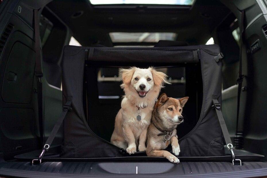 Perrera portátil Mopar para montarla en el baúl de la minivan Chrysler Pacifica. (Suministrada)