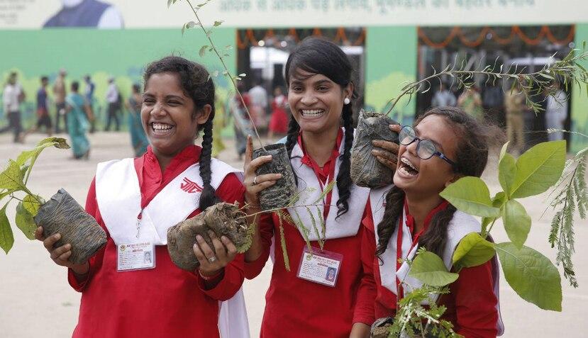 India hizo la promesa de mantener una tercera parte de su tierra cubierta de árboles (AP).