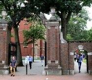 La entrada de la Universidad de Harvard en Cambridge, Massachusetts, el 13 de agosto del 2019.  (AP Photo/Charles Krupa, File)