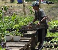 Asociación de Agricultores impulsa venta de productos a través de la web