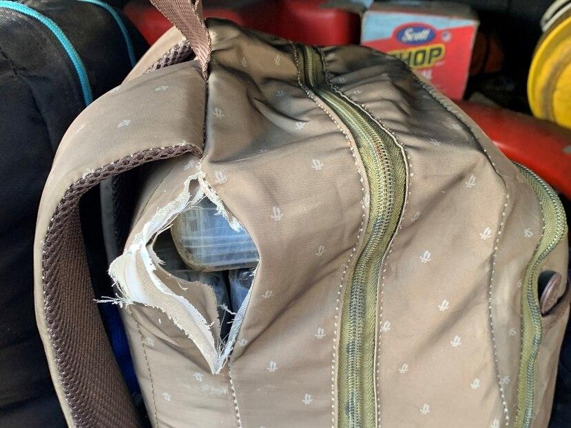 Los bultos con la cocaína fueron detectados por perros de la unidad K9 de Aduanas y Protección Fronteriza.