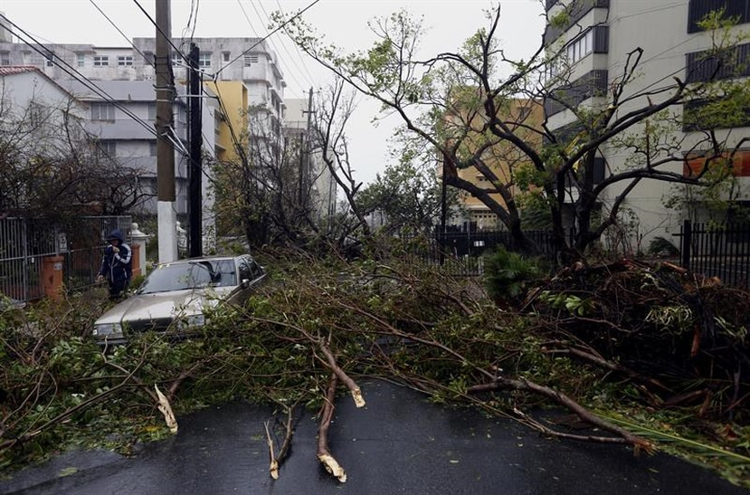 An image of a car hit by trees ripped by hurricane María in San Juan area. (EFE)