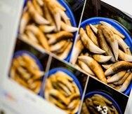 Captura de pantalla de un grupo de Facebook donde se muestra lo que parece ser un cubo lleno de dientes de tigre, que se ofrecen a la venta. (AP)