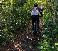 Aumento de ciclistas amenaza las plantas protegidas y en peligro de extinción en la Reserva Natural Tortuguero