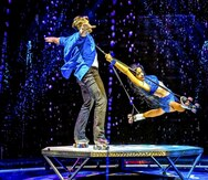 """Busch Gardens vuelve a ofrecer actividades bajo techo y un nuevo """"show"""""""