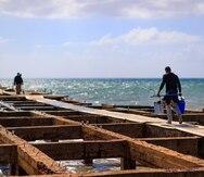 Sin fecha de entrega la ayuda federal a unos 800 pescadores comerciales