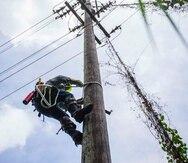 El huracán María dejó la mayoría de la infraestructura eléctrica del país hecha añicos. (GFR Media)
