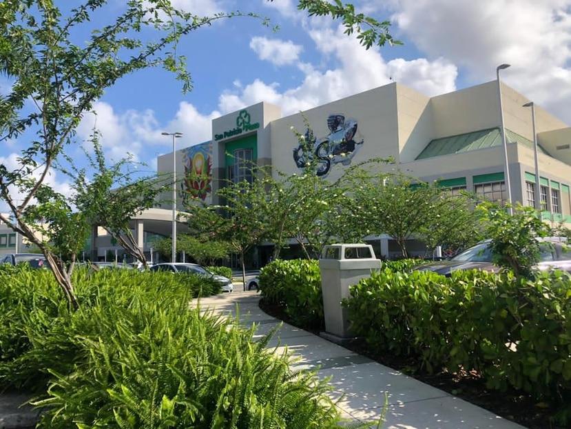 La reforestación de todas las áreas verdes del San Patricio Village es parte del proyecto de construcción de aceras que actualmente se lleva a cabo el centro comercial.
