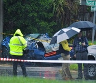 Una persona perdió la vida el miércoles cuando un árbol cayó sobre dos vehículos.