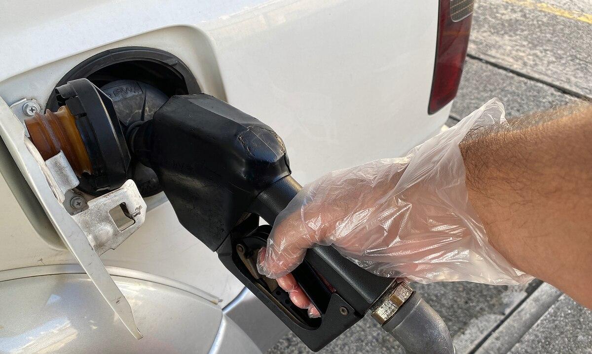 DACO certifica que los mayoristas de gasolina local están en cumplimiento