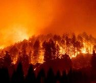 Aumenta el riesgo de que se desaten más incendios forestales en California