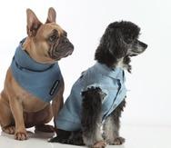 """Toy Doggie es una empresa puertorriqueña dedicada a la confección de productos orgánicos para """"grooming"""", accesorios y piezas de vestir para mascotas."""