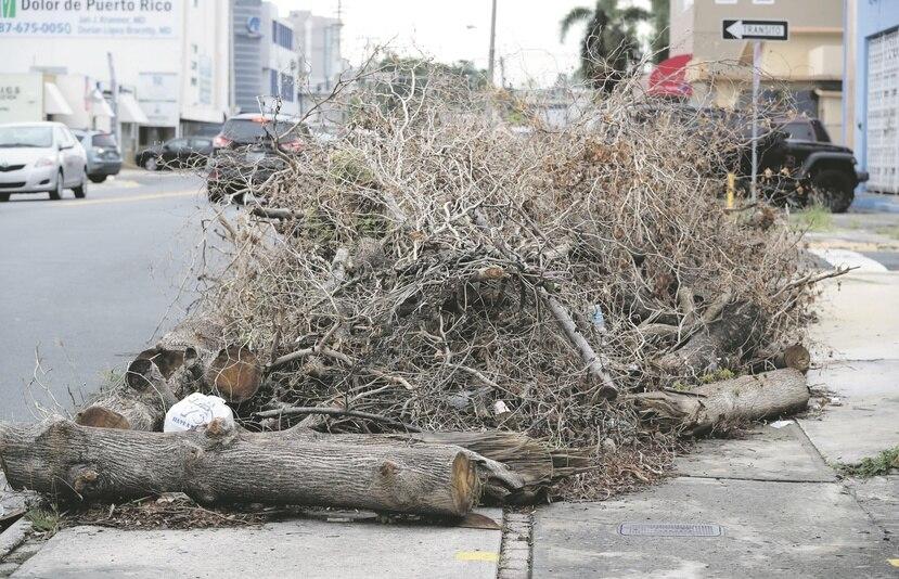 Según el Usace, falta por recoger 3.9 millones de yardas cúbicas de material vegetativo. (Archivo / GFR Media)