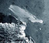 Las algas de la nieve son un componente clave de la capacidad del continente para capturar el dióxido de carbono. (EFE)