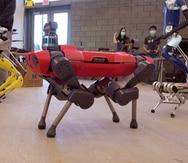 El fabricante Ford y la Universidad de Michigan inauguran edificio de robótica