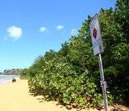 Los hechos se reportaron a eso de las 2:00 de la tarde, en playa Escondida, en Fajardo.