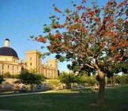 El antiguo cauce del Río Turia, en Valencia es un área sumamente tranquila, ideal para tomar un paseo. (Suministrada)
