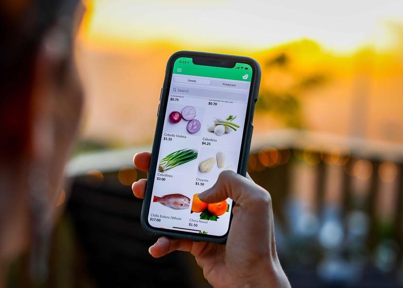 Mercado PRoduce! ya está disponible para los usuarios de teléfonos iOS y Android. La compra mínima en la nueva plaza del mercado virtual es de $60. (Suministrada)