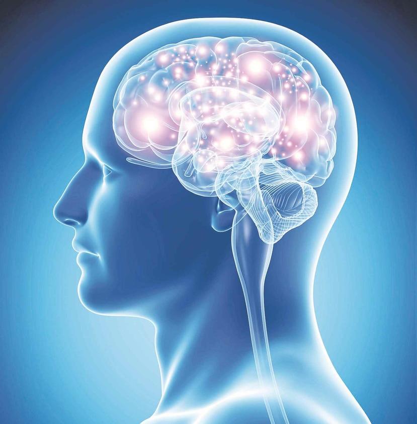 Cuando incluso la movilidad de los ojos se ve comprometida la enfermedad se denomina síndrome de enclaustramiento total y el estudio se realizó con cuatro pacientes de este tipo. (GFR Media)