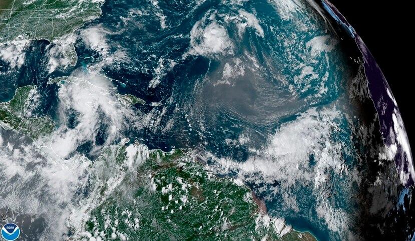 El estudio que publica Current Biology indica que la causa de estas muertes son los ciclones de fuerte intensidad que pueden durar días y a los que se tienen que enfrentar durante la migración desde sus lugares de nidificación en el Ártico hacia el Atlántico Norte, más al sur, donde invernan en condiciones más favorables.