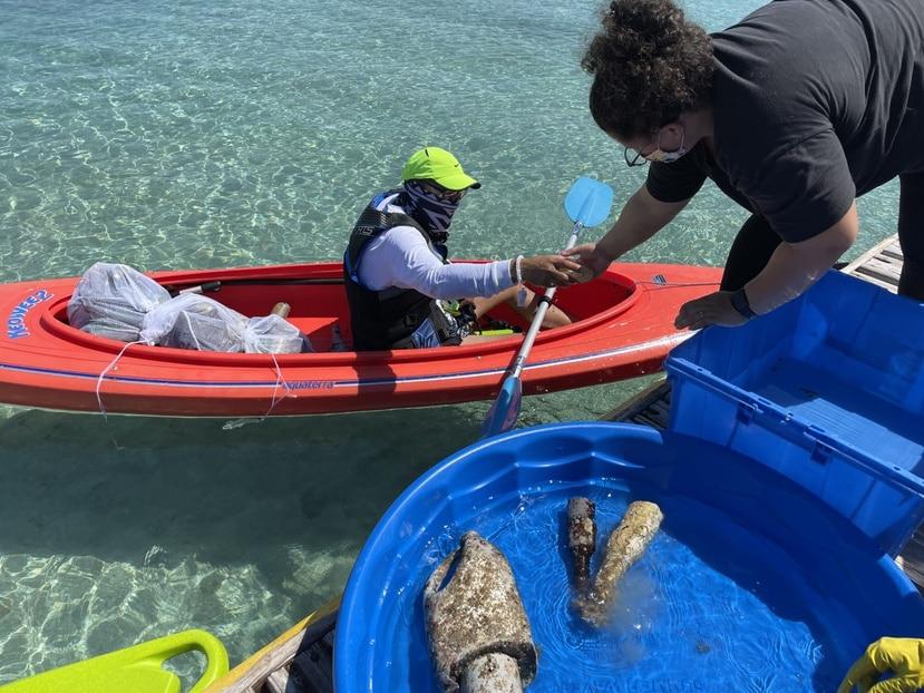 Cada punto de la limpieza donde estén los voluntarios será liderado por un capitán o capitana de costa.