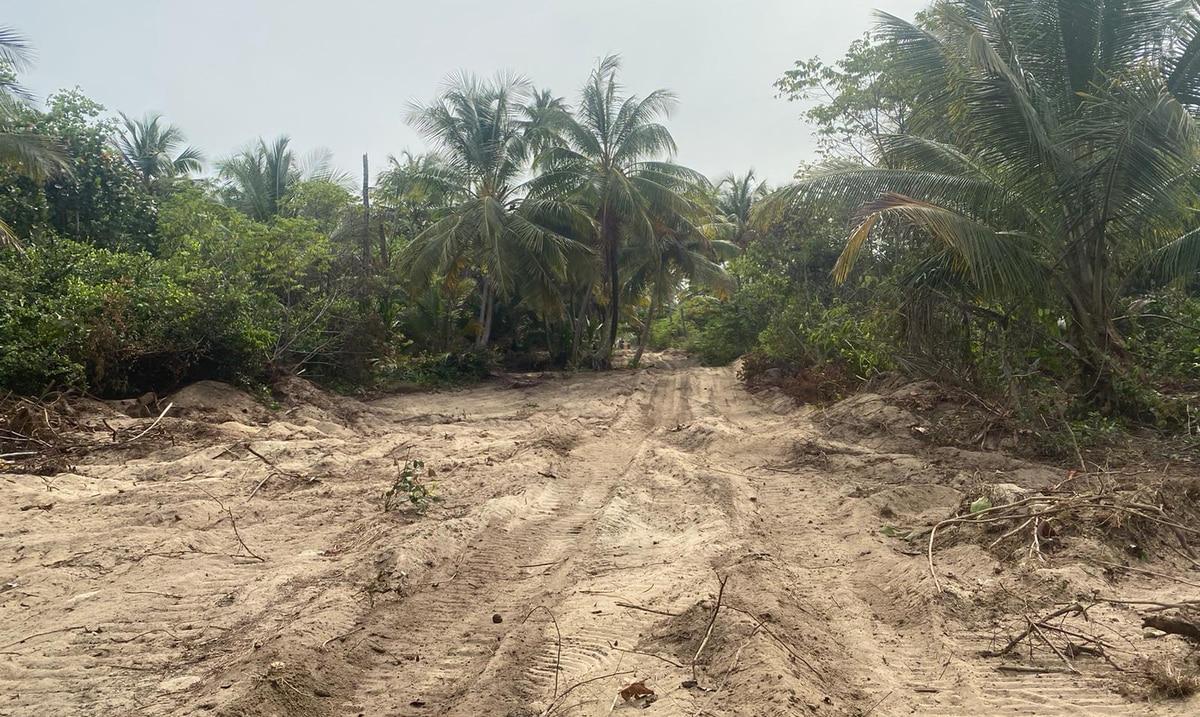 """Amigos del MAR denuncia inacción de Recursos Naturales tras """"desastre ecológico"""" en Piñones"""