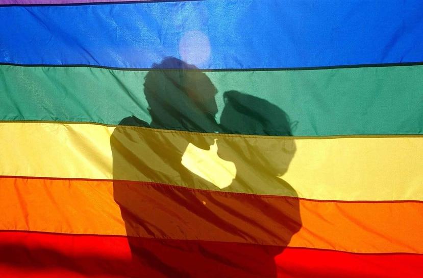 """La Constitución dirá que """"se reconoce en igualdad de derechos a las familias formadas por parejas de personas LGBTI con o sin hijas e hijos que estén bajo la figura de matrimonio civil, concubinato o alguna otra unión"""". (Archivo EFE)"""